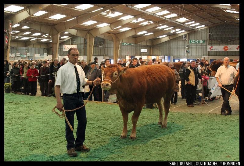 Festival de l'élevage Quimper - 2012